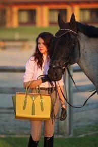 Jolanda_adelaar_carletto_015_desori_horse