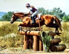 Goldfarb.Jumping