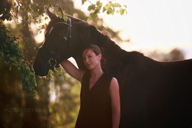 The stylish equestrian header